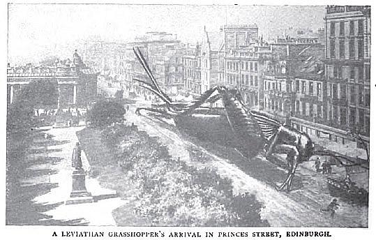 grasshopper, Strand Magazine, 1910