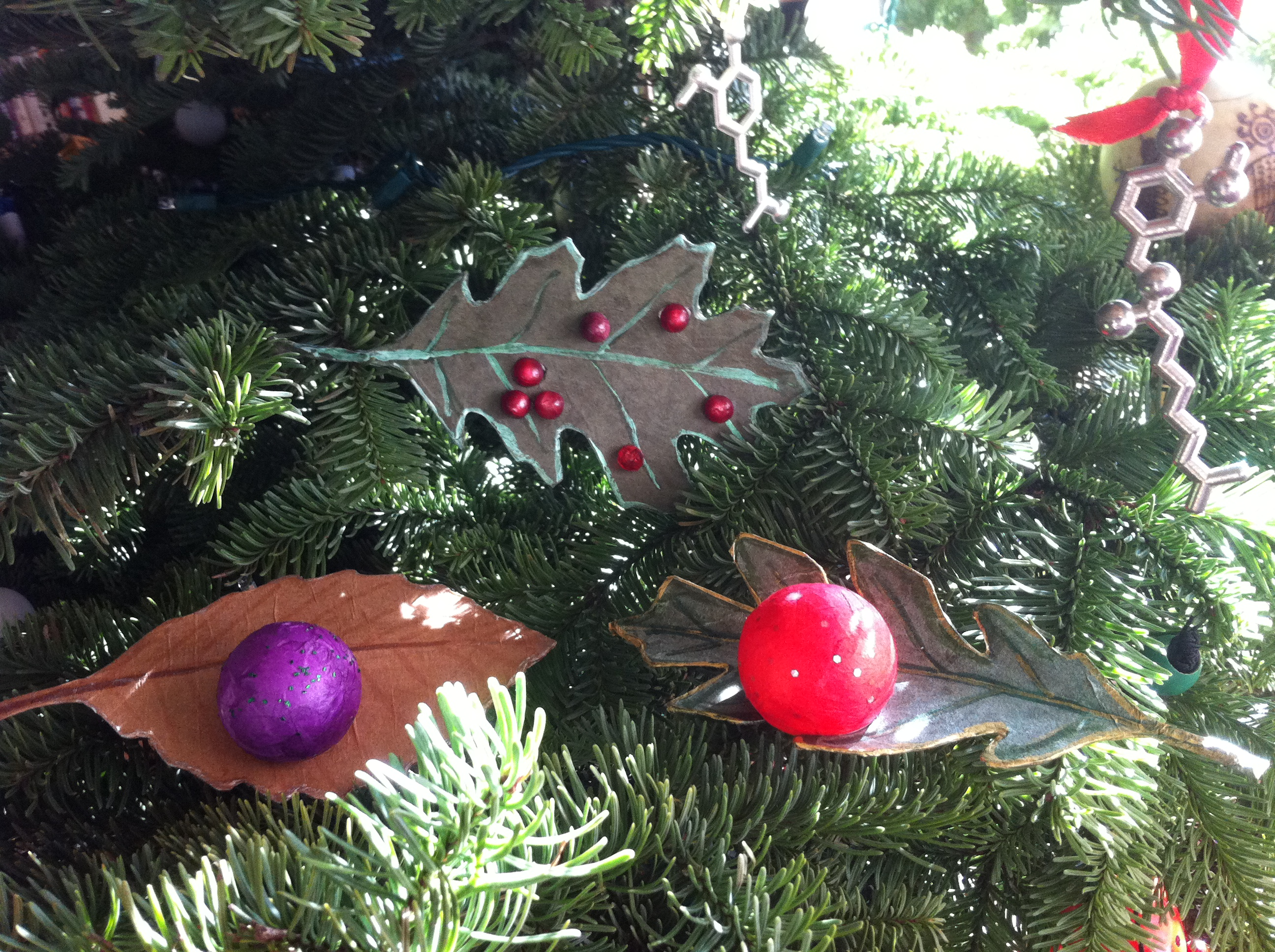 Wasp Gall Ornaments