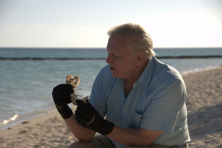 Attenborough about to get his finger sliced off
