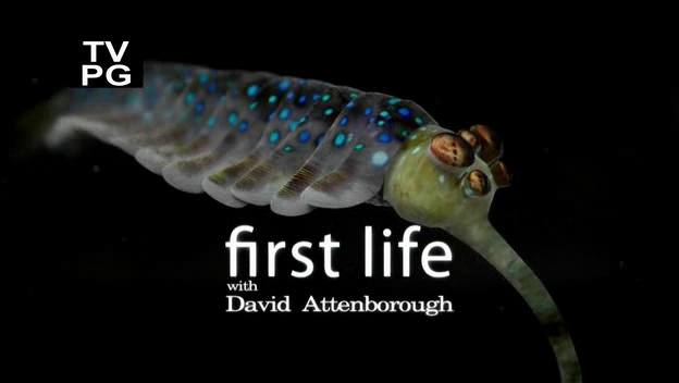attenborough_opabinia